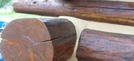 Виды герметиков для древесины и их применение