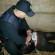 В Николаеве злоумышленник выстрелил в таксиста