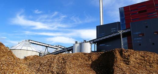 bcd6c1b-biomass.LJiad_